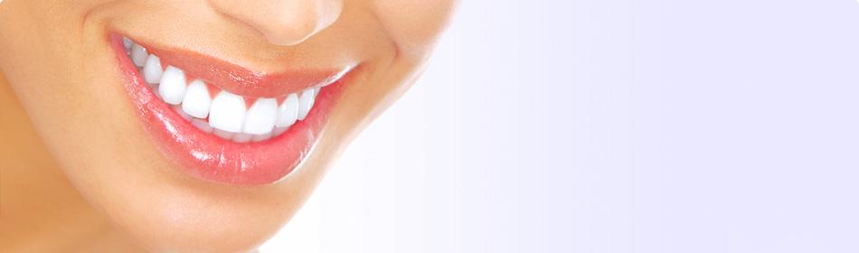 あなたにピッタリの検索サイト|矯正歯科検索屋